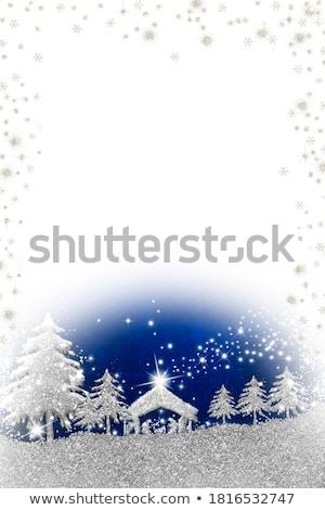 Noël · arbres · nature · fond · hiver · graphique - photo stock © wad