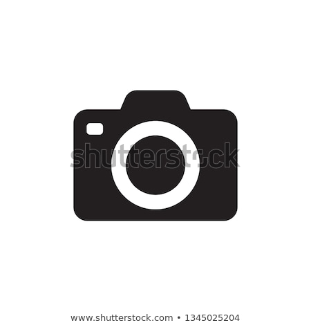 vector · icono · Polaroid · pingüino - foto stock © zzve