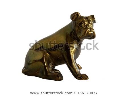bronze dog Stock photo © vavlt