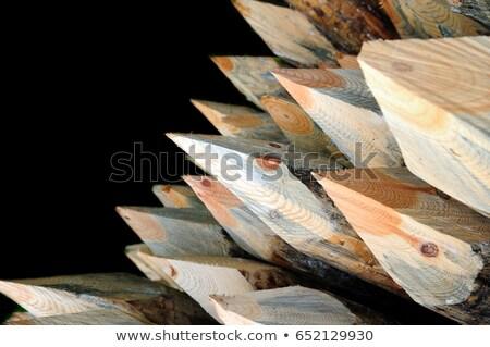 éles egyezség színes ceruzák ceruza ceruzahegyező Stock fotó © zhekos