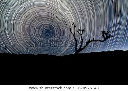 Time Lapse Image of the Night Stars Stock photo © tobkatrina