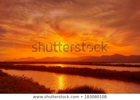 Испания · закат · соль · очистительный · завод · воды · промышленности - Сток-фото © lunamarina