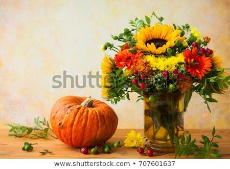 fresh pumpkin in autumnal garden stock photo © olinkau