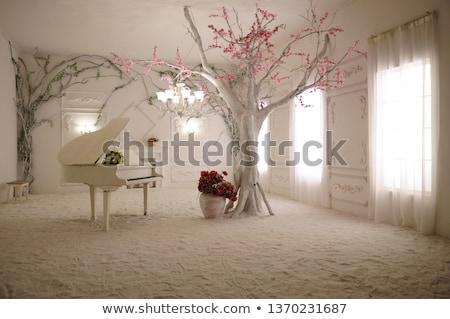 piyano · pencere · ışık · hazır · müzik - stok fotoğraf © reicaden