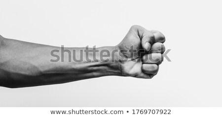 rel · protest · vuist · lucht · mannelijke - stockfoto © 5xinc