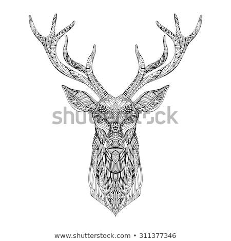 absztrakt · szarvas · fej · törzsi · tetoválás · terv - stock fotó © anbuch