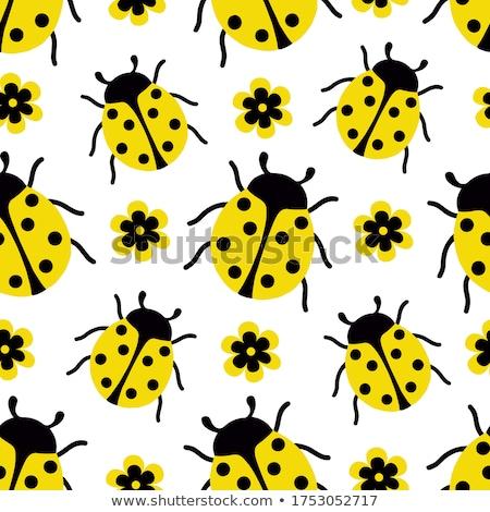 Foto stock: Joaninha · flor · ilustração · flores · amarelo
