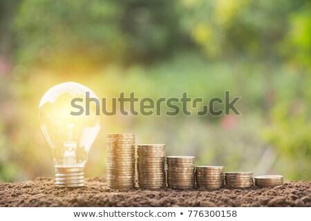 деньги · дорогой · энергии · законопроект · власти · шнура - Сток-фото © hofmeester