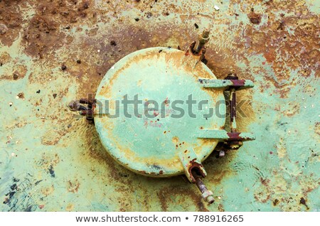 Rust Covered Door Stock photo © rhamm
