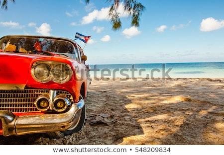 Летние каникулы Куба пляж человек карт Сток-фото © stevanovicigor