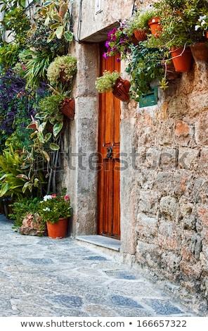 middellandse · zee · dorp · oude · huis · bloemen · huis · stad - stockfoto © wjarek