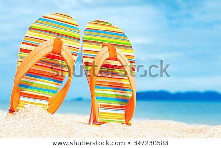 Beach sandals on tropical sandy coast Stock photo © dariazu