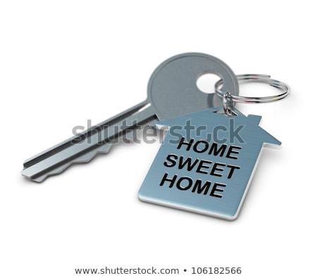 Marketing Concept. Keys with Keyring. Stock photo © tashatuvango