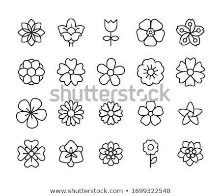 flower icons set stock photo © pakete