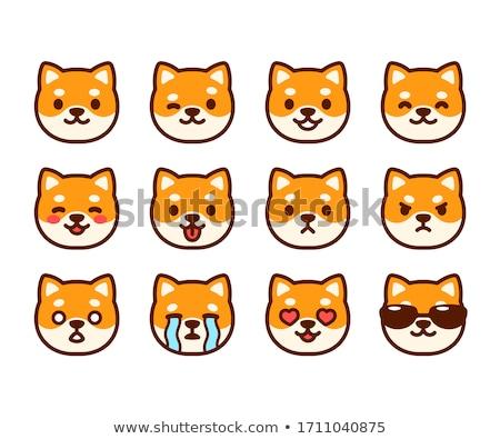 Kutya arc érzelem ikon illusztráció felirat Stock fotó © kiddaikiddee
