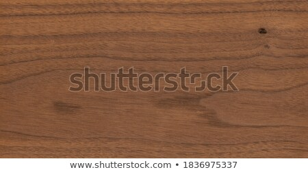 Doku ağaç ahşap duvar dizayn bağbozumu Stok fotoğraf © FOTOYOU