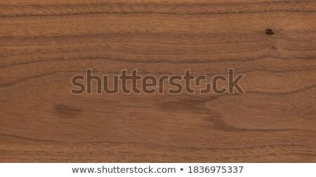 textura · árvore · madeira · parede · projeto · vintage - foto stock © FOTOYOU