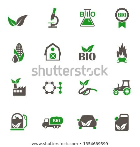 Kolorowy zielone paliwa ikona organiczny Zdjęcia stock © adrian_n