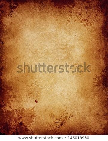 western · szett · izolált · fehér · üzlet · háttér - stock fotó © doomko