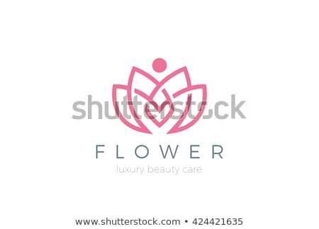 Stok fotoğraf: Güzellik · vektör · lotus · çiçekler · dizayn · logo