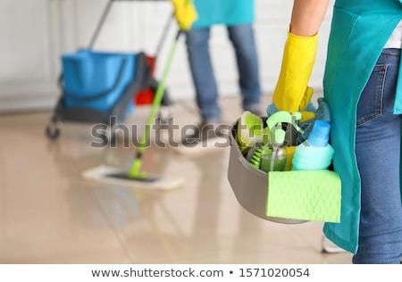 Schoonmaken dienst illustratie schone spons oplossing Stockfoto © adrenalina