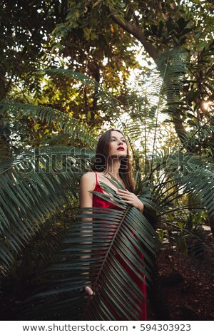 Vertical image mystère femme effet de serre robe rouge Photo stock © deandrobot