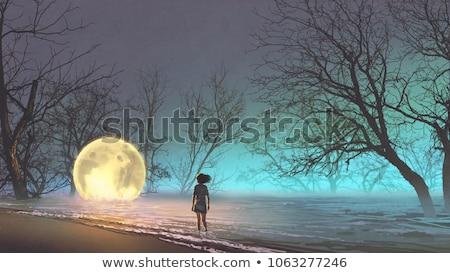 mulher · jovem · caminhada · lago · luz · árvores · montanha - foto stock © monkey_business