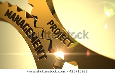 Negócio projeto dourado roda dentada engrenagens ilustração 3d Foto stock © tashatuvango