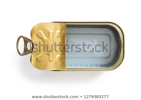 пусто олово металл контейнера можете открытых Сток-фото © Digifoodstock