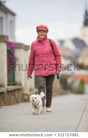 Senior woman walking outdoors with walker in autumn park Stock photo © manaemedia