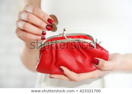 Lány tart érme pénztárca női Stock fotó © IS2