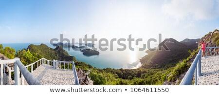 panorama · nascer · do · sol · correia · ver · belo - foto stock © Yongkiet