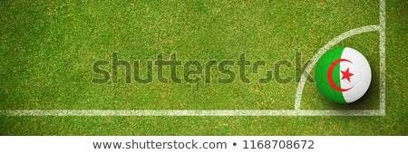 Futball Algéria színek zöld textúra futball Stock fotó © wavebreak_media