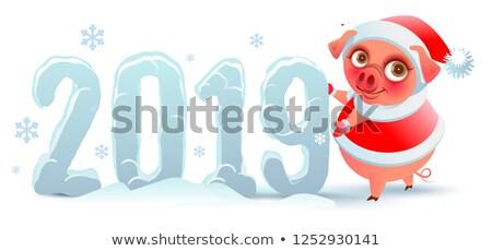 Varken symbool jaar aantal sneeuw vector Stockfoto © orensila