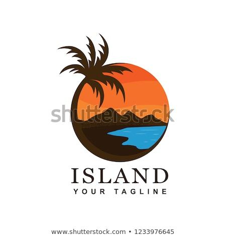 Photo stock: Simple · plage · palmiers · coucher · du · soleil · vue · Voyage