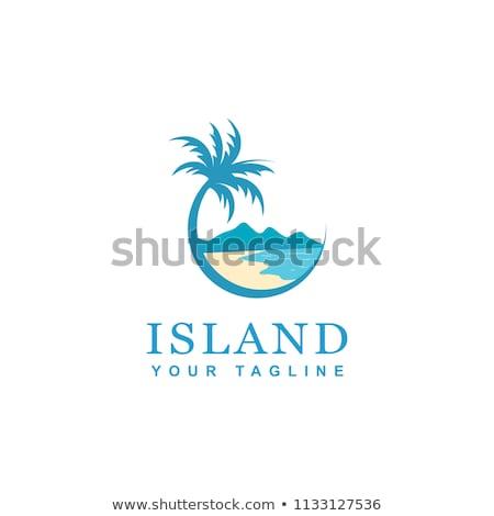 Pálmafák trópusi körkörös felirat utazás sziget Stock fotó © svvell