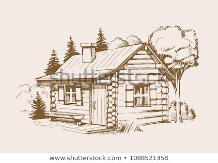 Drewna kabiny lasu ilustracja budynku krajobraz Zdjęcia stock © colematt