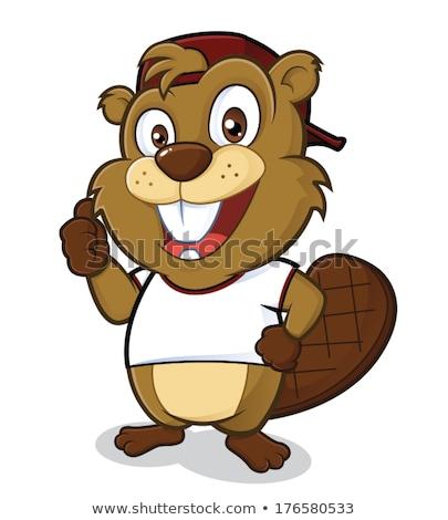 Desenho animado castor beisebol ilustração jogar feliz Foto stock © cthoman