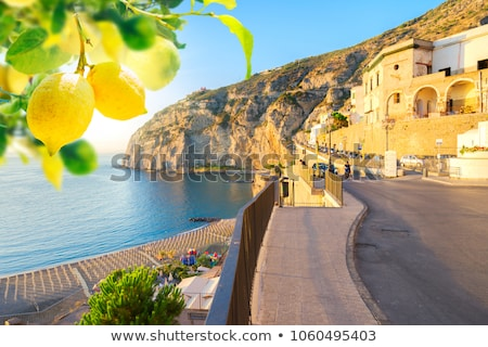 Meta di Sorrento, southern Italy Stock photo © neirfy