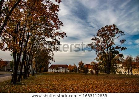 the town Kamenz, Saxony in Germany Stock photo © LianeM