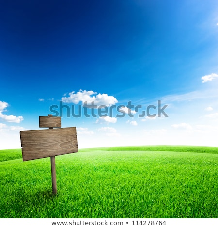 wood sign with grass and blue sky stock photo © rufous
