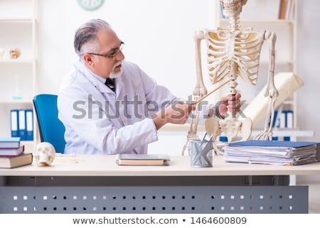 mosolyog · orvos · mutat · anatómiai · gerincoszlop · klinika - stock fotó © elnur