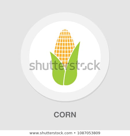 Healthy Food Vegetable Maize Vector Sign Icon Stock photo © pikepicture