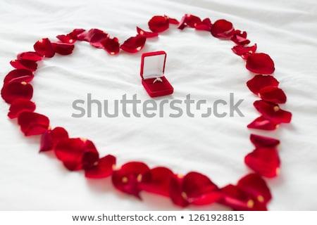 Coração pétalas anel de diamante caixa de presente dia dos namorados proposta Foto stock © dolgachov