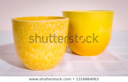 Colorful flowers in ceramic pot Stock photo © dashapetrenko