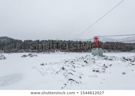 Süspansiyon asılı köprü üzerinde kış dondurulmuş Stok fotoğraf © olira