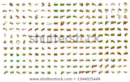 большой коллекция вектора флагами Литва стороны Сток-фото © butenkow