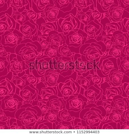 Gyönyörű rózsaszín skicc fehér végtelen minta természet Stock fotó © evgeny89
