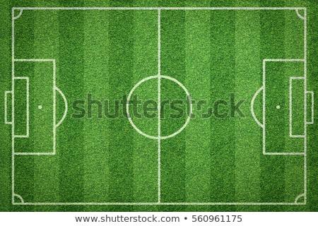 soccer field with beautiful green grass in stadium stock photo © zurijeta
