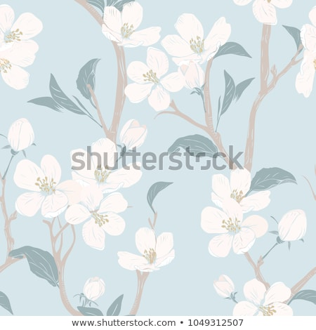 Cherry blossom. Seamless background.  stock photo © isveta
